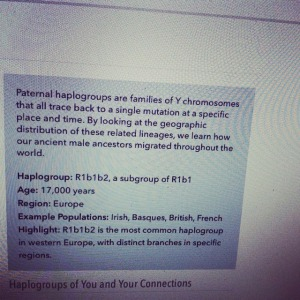Paternal Haplogroup